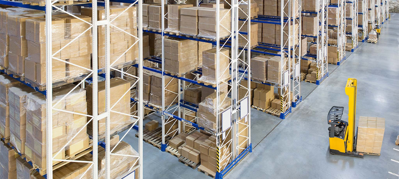 Consulenza Logistica